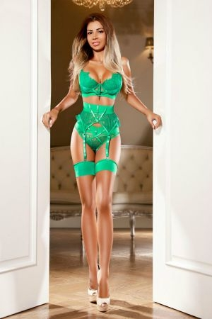 Fabulous model wearing green lingerie and suspenders